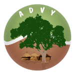 ADVY : Association pour le développement de Yaongo au Burkina Faso