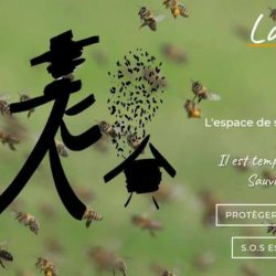 Lapiculteur.com